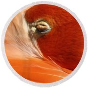 Flamingo Orange Eye Round Beach Towel