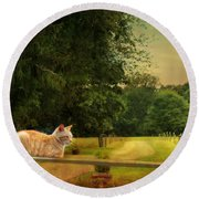 Orange Farm Cat Round Beach Towel