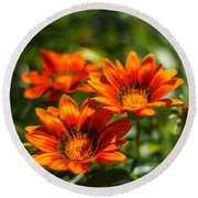 Round Beach Towel featuring the photograph Orange Flowers by Jane Luxton