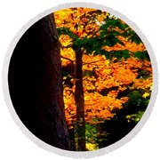 Round Beach Towel featuring the photograph Orange Foliage by Denyse Duhaime