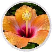 Orange Hibiscus And Dew Drops Round Beach Towel