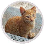 Orange Kitten 2 At The Front Porch Round Beach Towel