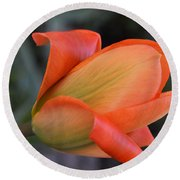 Orange Lady Round Beach Towel by Felicia Tica