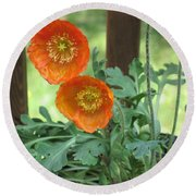 Round Beach Towel featuring the photograph Orange Poppies by HEVi FineArt