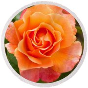 Orange Rose Lillian Round Beach Towel