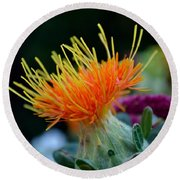Orange Safflower Round Beach Towel