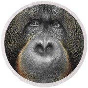 Orangutan Round Beach Towel by Svetlana Sewell