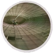 Round Beach Towel featuring the photograph Orchard Orbweaver #1 by Paul Rebmann