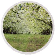Round Beach Towel featuring the photograph Orchard by Patricia Babbitt
