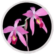 Orchid 1 Round Beach Towel