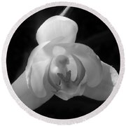 Orchid #2 Round Beach Towel