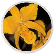 Orchid 5 Round Beach Towel by Andy Shomock