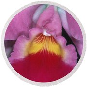 Orchid 8 Round Beach Towel