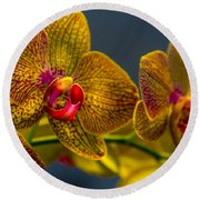 Orchid Color Round Beach Towel by Marvin Spates