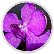 Orchid From Art Gallery Round Beach Towel