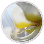 Orchid Melody  Round Beach Towel