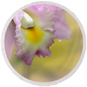 Orchid Whisper Round Beach Towel