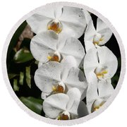 Orchids Anna Round Beach Towel