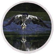Osprey Bird Of Prey Round Beach Towel