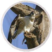 Osprey Pose Round Beach Towel