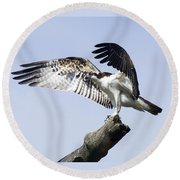 Osprey Pride 2 Round Beach Towel
