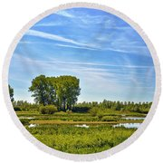 Round Beach Towel featuring the photograph Ossenwaard Near Deventer by Frans Blok