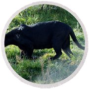Out Of Africa  Black Panther Round Beach Towel