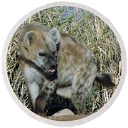 Out Of Africa  Hyena 2 Round Beach Towel