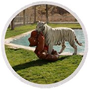 Out Of Africa Tiger Splash 2 Round Beach Towel