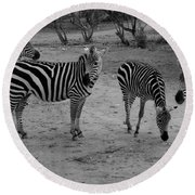 Out Of Africa  Zebras Round Beach Towel