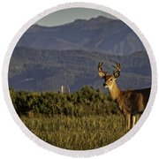 Out West Round Beach Towel