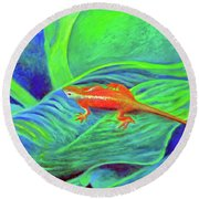 Outer Banks Gecko Round Beach Towel