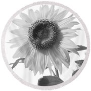 Over Looking The Garden Round Beach Towel