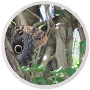Owl Butterfly In Hiding Round Beach Towel
