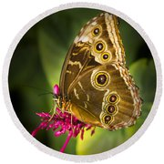 Owl Butterfly With A Hat Round Beach Towel