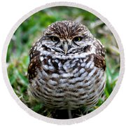 Owl. Best Photo Round Beach Towel