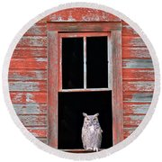 Owl Window Round Beach Towel
