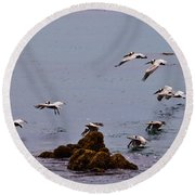Pacific Landing Round Beach Towel by Melinda Ledsome