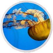 Pacific Nettle Jellyfish Round Beach Towel
