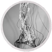 Pacific Sea Nettle - Black And White Round Beach Towel