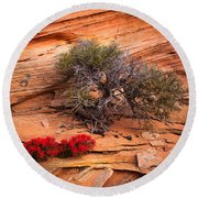 Paintbrush And Juniper Round Beach Towel