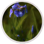 Painted Alaskan Wild Irises Round Beach Towel