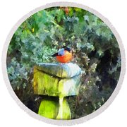 Painted Bullfinch S1 Round Beach Towel