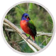 Round Beach Towel featuring the photograph Painted Bunting Photo by Meg Rousher