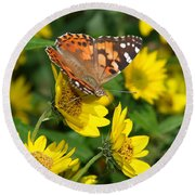 Round Beach Towel featuring the photograph Painted Lady by James Peterson