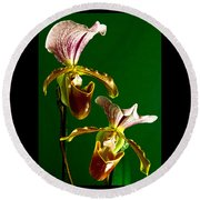 Pair Of Lady Slipper Orchids Round Beach Towel
