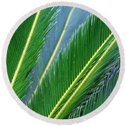 Palm Cycas Fronds Round Beach Towel
