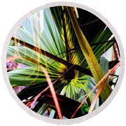 Palm Through The Fronds Round Beach Towel