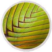 Palm Tree Leafs Round Beach Towel