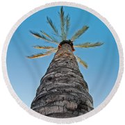 Palm Tree Looking Up Round Beach Towel